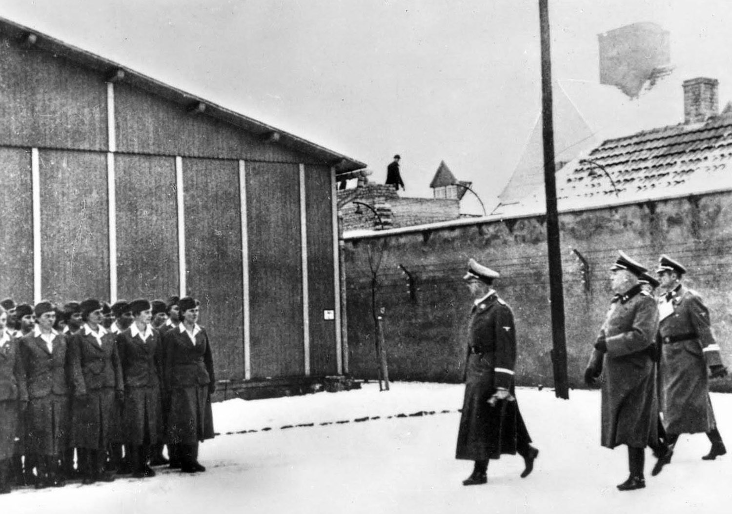 Female SS guards employed in concentration camps
