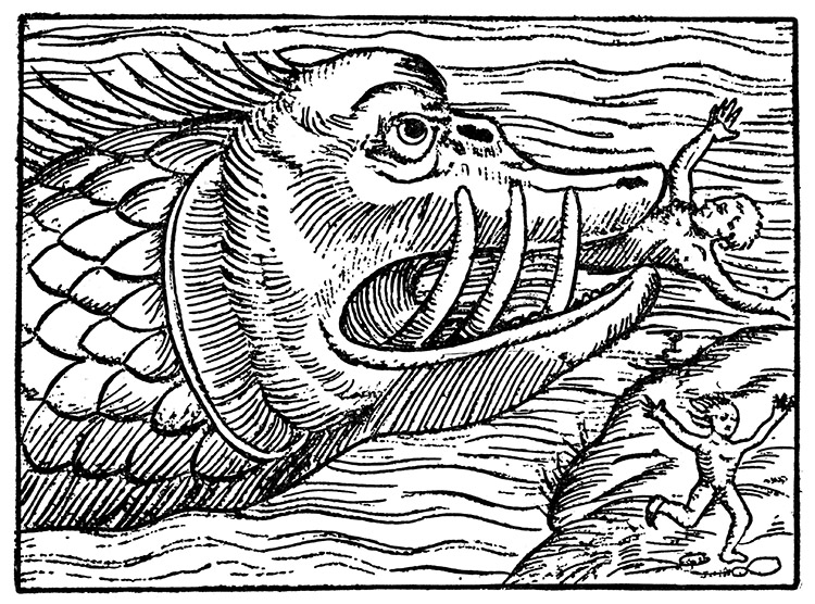 Sea monster, medieval woodcut, c.1600.