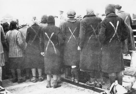 Female prisoners in Ravensbrück. Image: Red Cross.