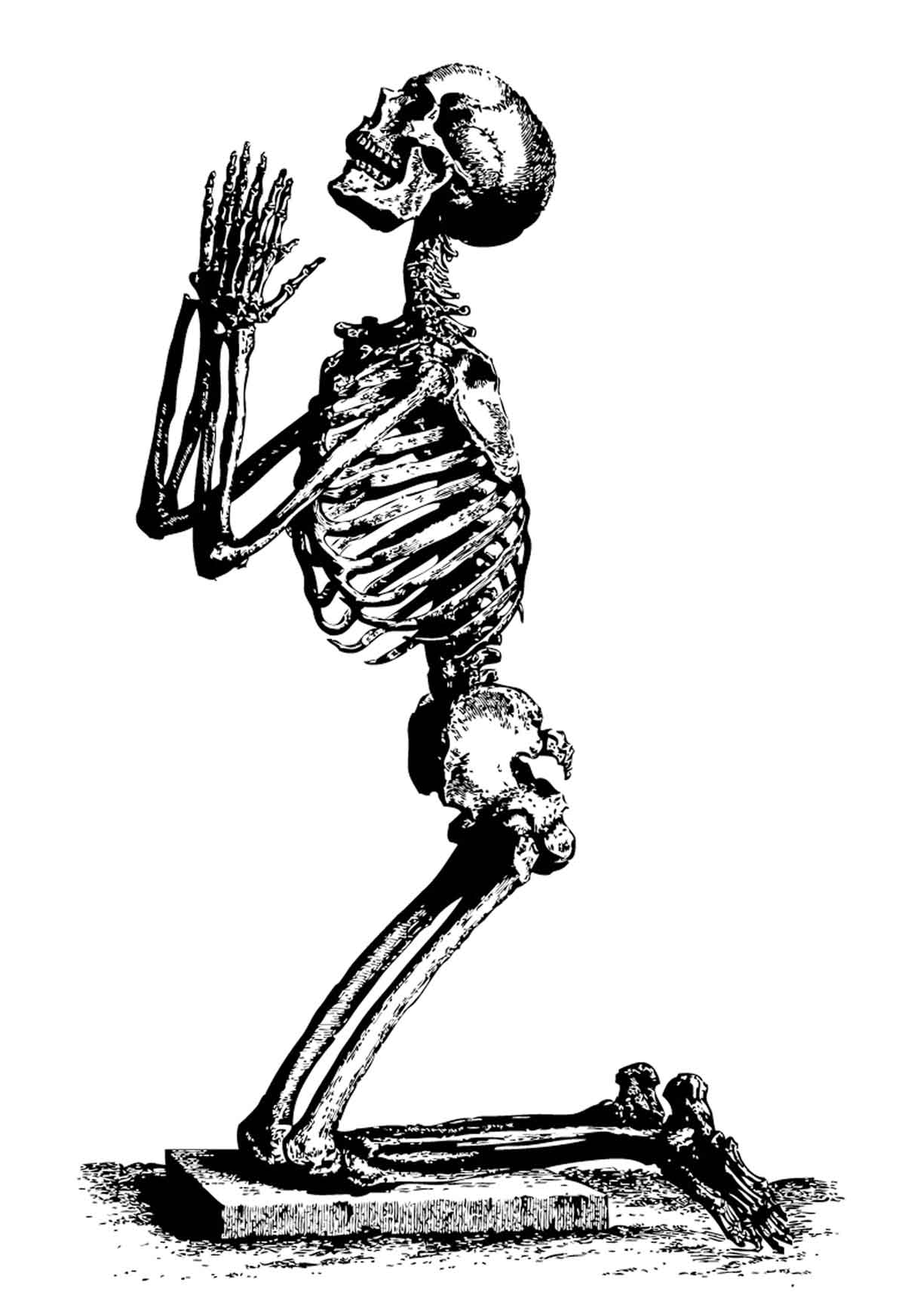 A praying skeleton portraying the Black Death, woodcut, 15th century © Bridgeman Images.
