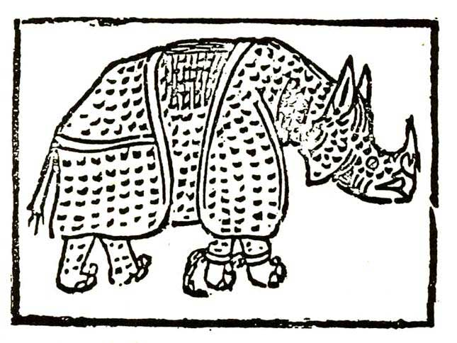 Giovanni Giacomo Penni's engraving of a rhinoceros, 1515. Courtesy Wikimedia/Creative Commons.