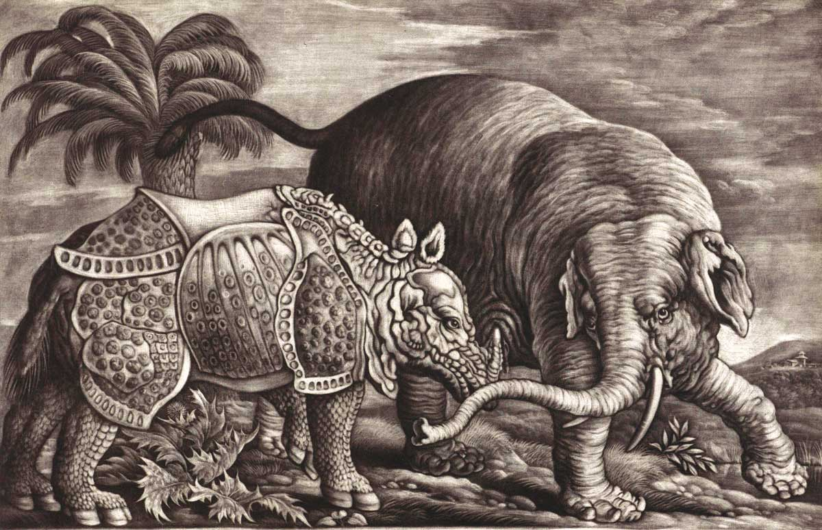 Elephant and Rhino, engraving by Jan Griffier, after Francis Barlow, late 17th century. Alamy.