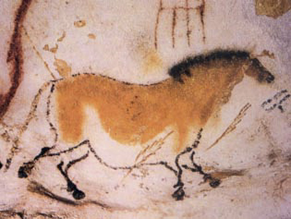 Cave painting of a dun horse (equine) at Lascaux
