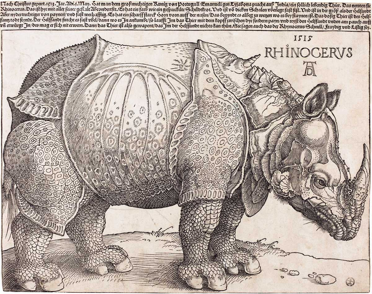 Rhinoceros, by Albrecht Dürer, woodcut, 1515. National Gallery of Art, Washington DC / Wikimedia/Creative Commons.