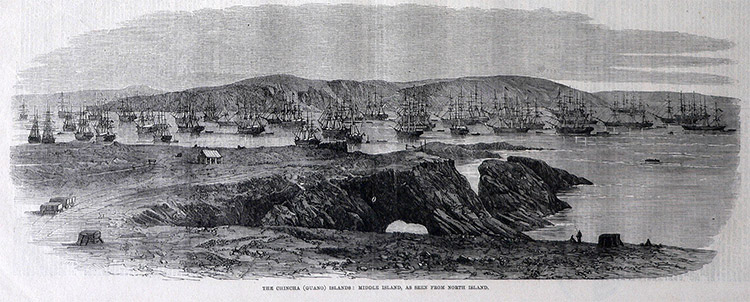Massed shipping in the Chincha Islands in 1863, at the height of guano extraction