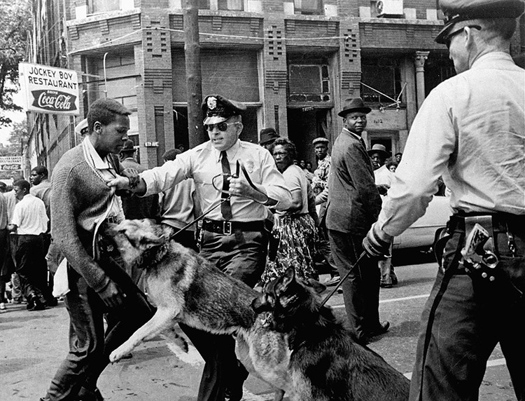 A civil rights activist is attacked by police dogs in Birmingham, Alabama, May 1963