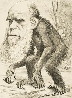 """A Venerable Orang-outang"", a caricature of Charles Darwin as an ape published in The Hornet, a satirical magazine, in 1871."