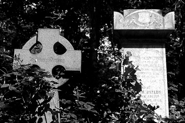 A graveyard in Abney Park, north London