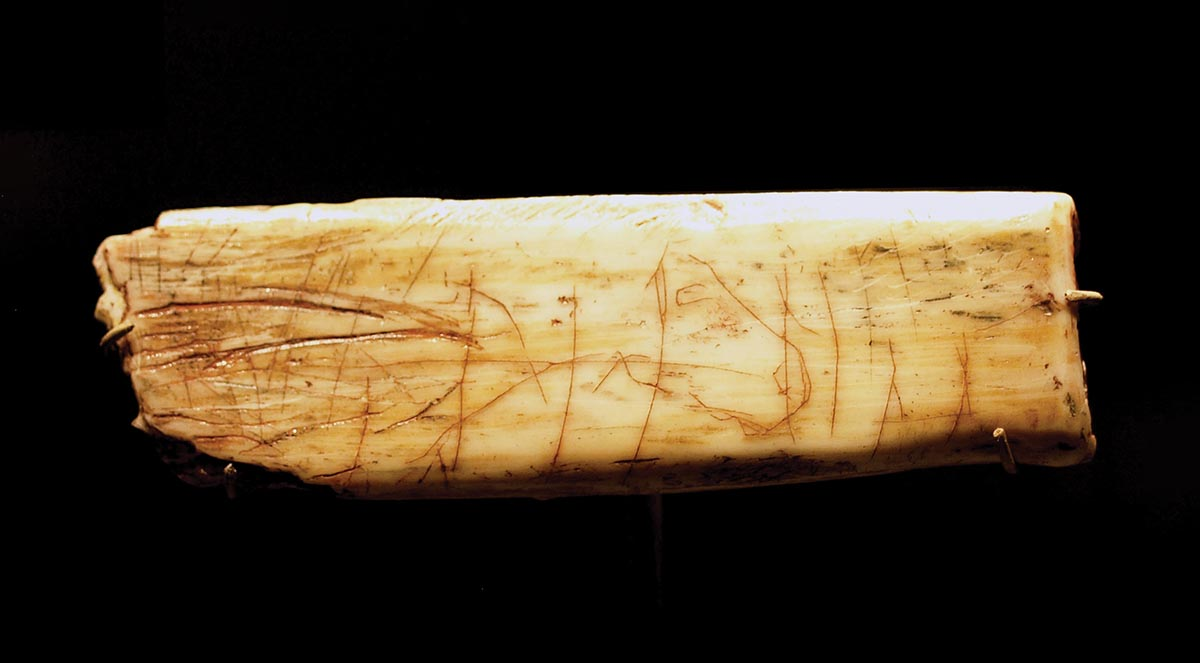 The Ochre Horse, equine rib inscribed with horse image. Courtesy Dave, Nottingham/Wikimedia Creative Commons