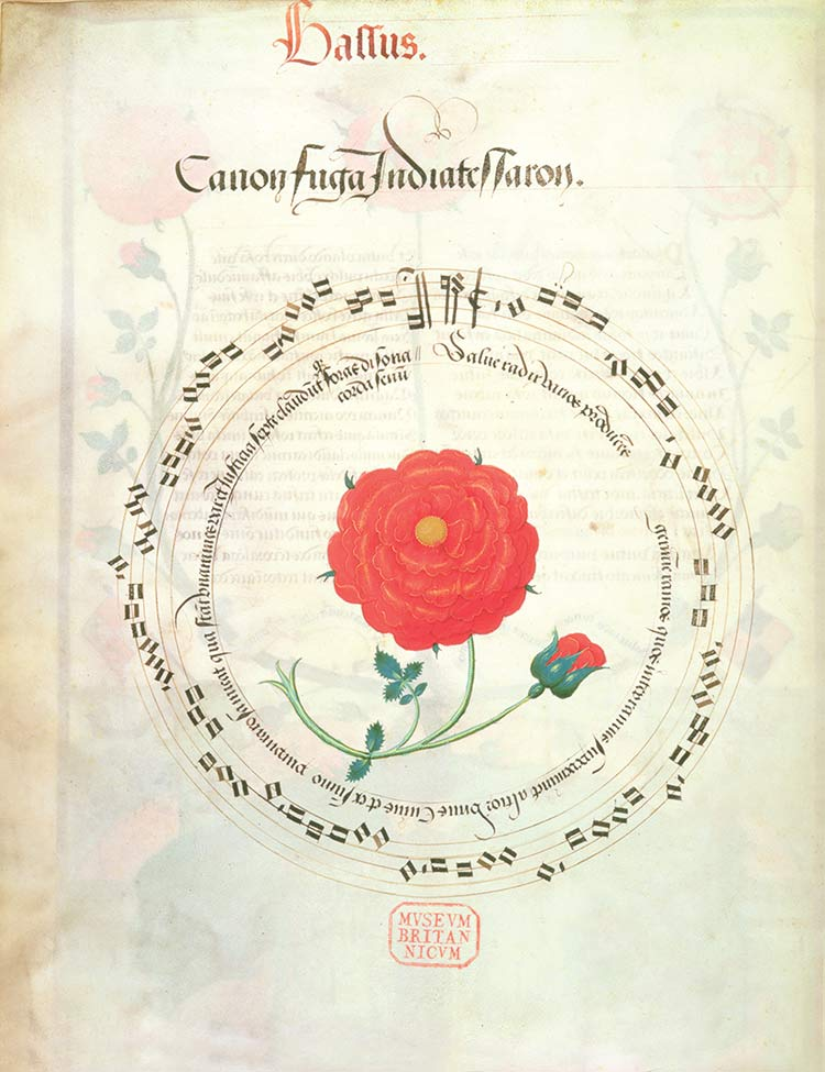 Music of the spheres: Richard Sampson's motets, 16th century.
