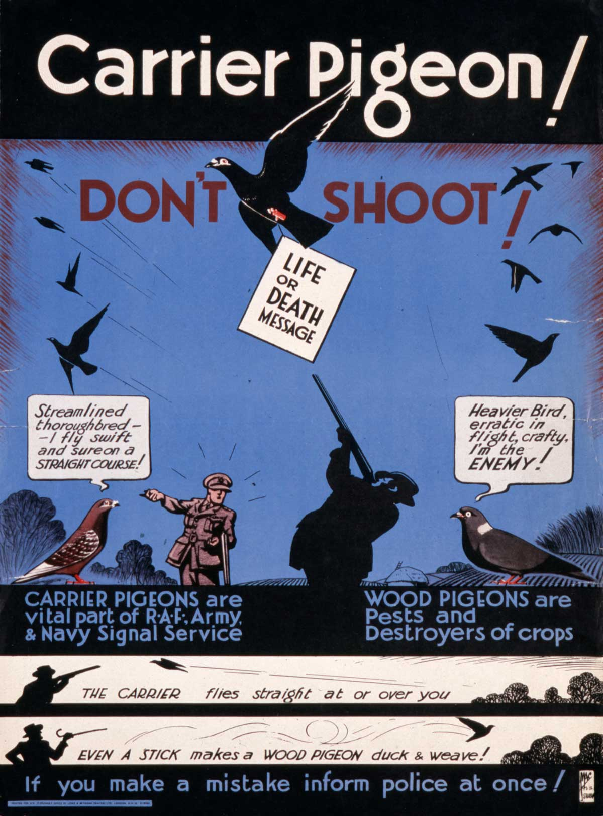 wartime poster warning people of the dangers of shooting carrier pigeons, 1940s.