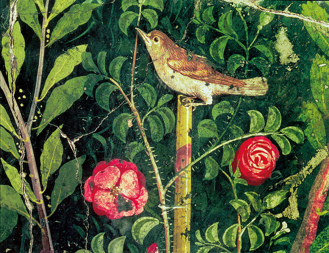 Wall painting of a bird in a garden, Pompeii, first century AD.