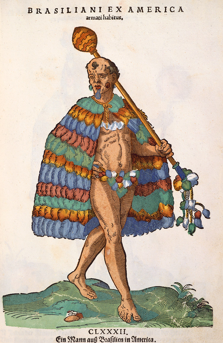 A 'Brazilian from America', 16th century