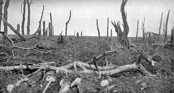 Douglas Haig and the Somme Campaign