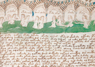 A detail from a 'balneological' page from the Voynich Manuscript © akg-images