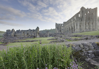 The ruins of Rievaulx Abbey on the River Rye in North Yorkshire by WyrdLight.com. Licensed under CC BY-SA 3.0 via Wikimedia Commons.