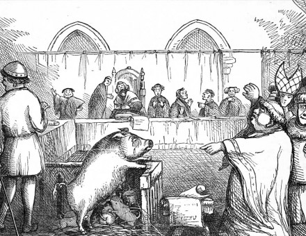 'Trial of a Sow and Pigs at Lavegny', French illustration, 1849 © Getty Images.