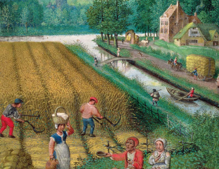 Harvesting, ploughing and sowing, from  a book of hours, Flemish, c.1540.