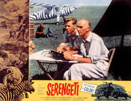 'Spectacular in Color' film poster for Serengeti, 1960.