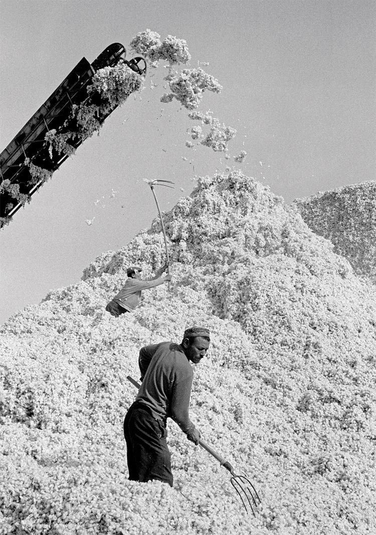 Cotton storage, Uzbekistan, 1972.