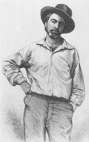 an essay on the life and political issues of walt whitman An essay on the life and political issues of walt whitman please call our 40 (volume 20 essayist.